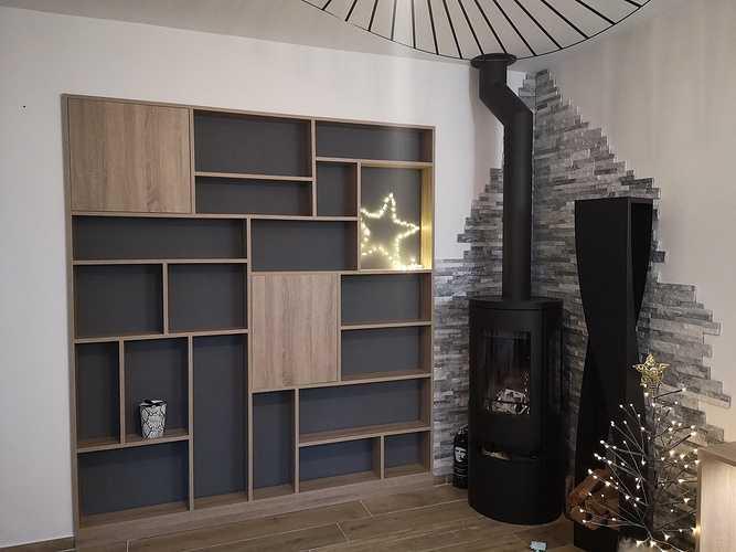 Fabrication et installation meuble pour salon 0